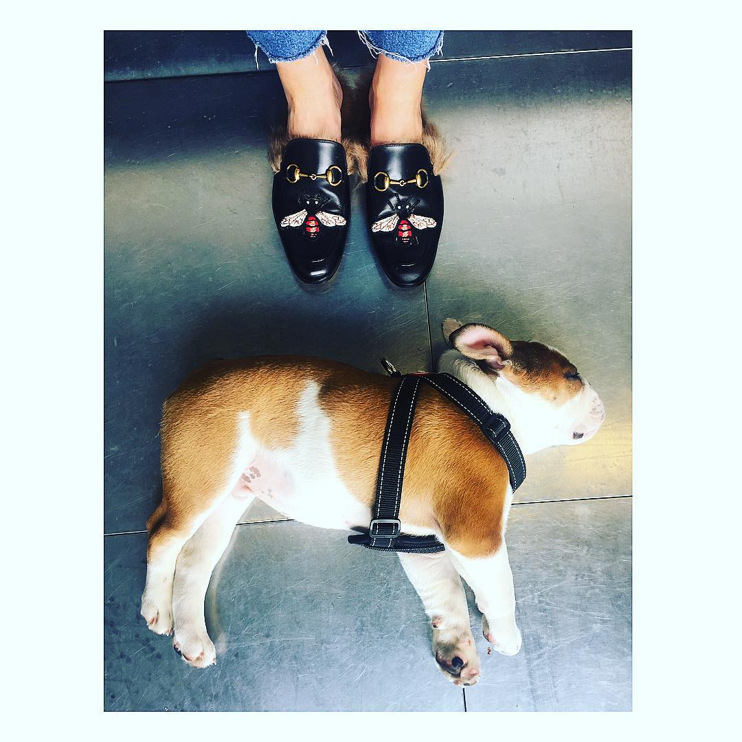 Gucci Princetown slippers loafers furry